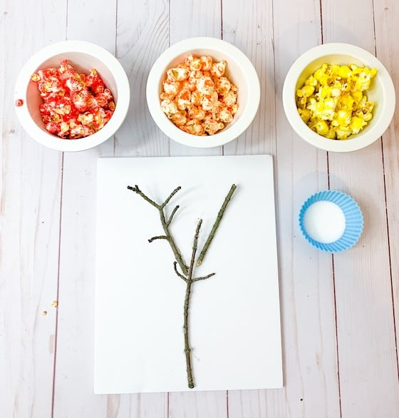 bare twig and 3 bowls coloured popcorn