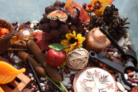 mini apples, pumpkins, candles, monarchs, pinecones and lentils in bin for kids to play with