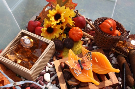 suggested items for an Autumn Sensory bin