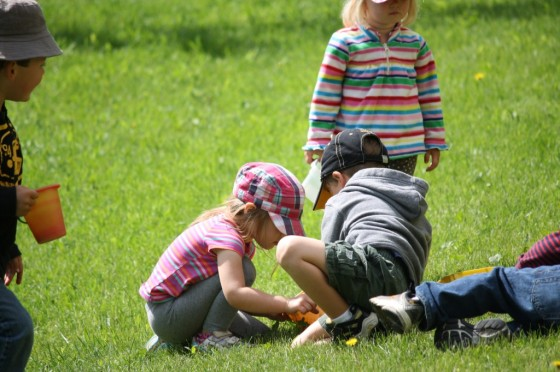 Toddlers collecting leaves and flowers