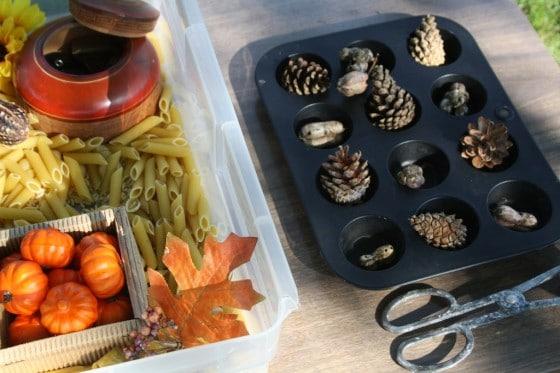 what to put in a fall sensory bin