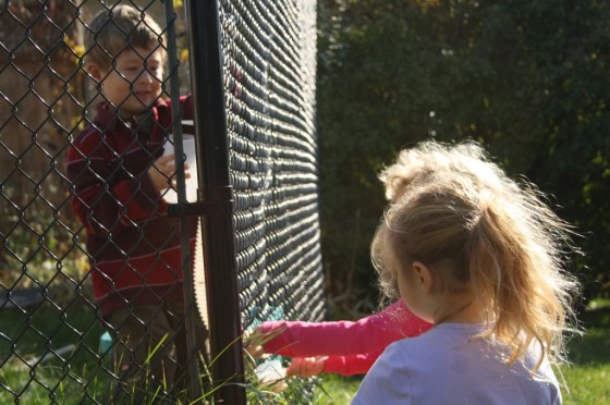 preschoolers working together through chainlink fence