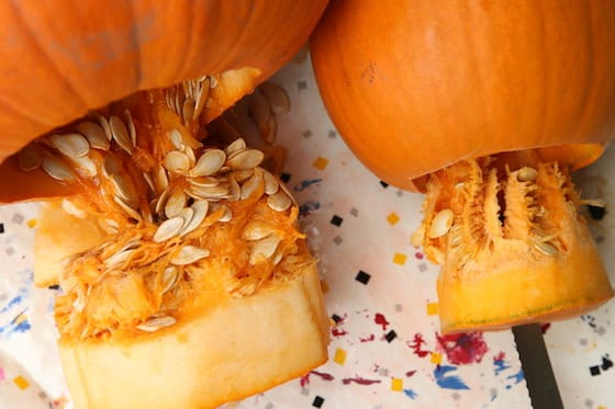 2 pumpkins with seeds and pulp, gutted from bottom