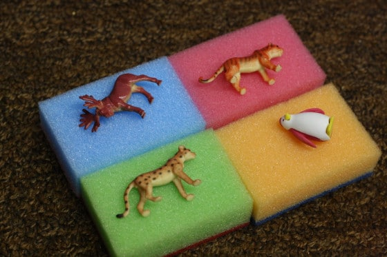 4 coloured sponges with toy animals on them
