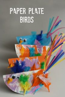 paper plate birds cover picture