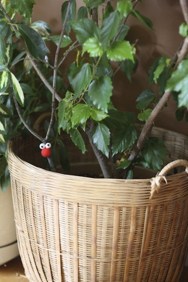 reindeer ornament in hibiscus plant