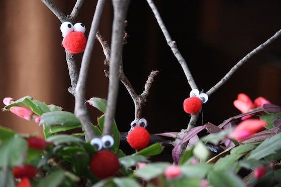 Reindeer decorations in a Christmas Cactus