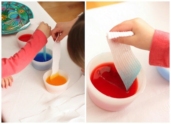 dipping paper towels into coloured water to learn about water absorption