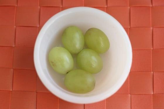 grapes to raisins experiment day 1 mar 17