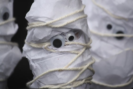 toilet roll and tissue paper mummies