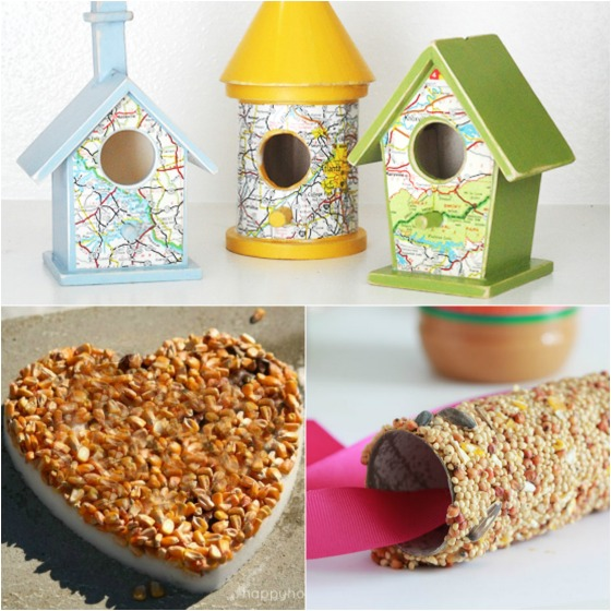 3 fun ways to make bird feeders