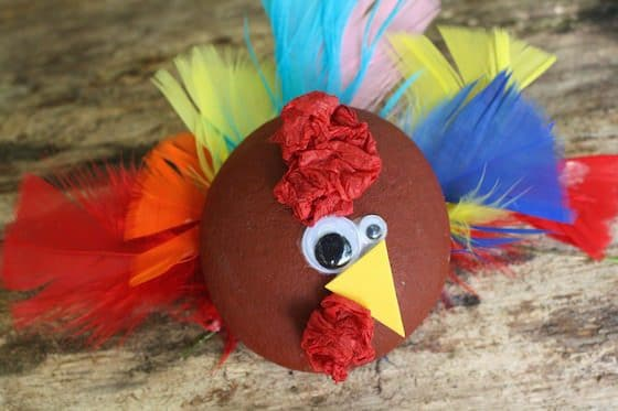 painted rock turkey craft