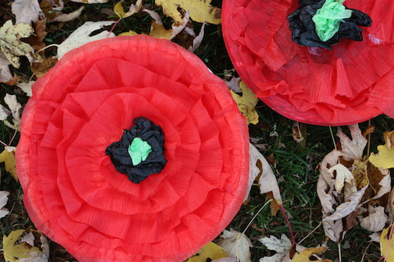 2 crepe paper poppies displayed in fall leaves