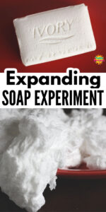 Expanding Ivory Soap Experiment 600 x 1200