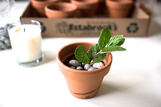small clay flowerpot filled with brownie, mousse, candy rocks, gummy worms and sprig of mint