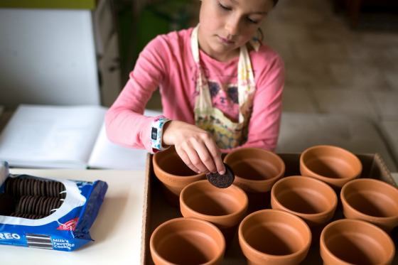 putting oreos in flowerpots