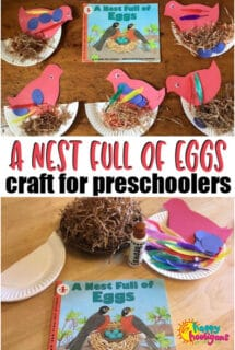 bird nest egg craft