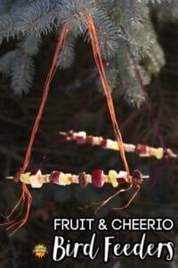 fruit and cheerios bird feeder