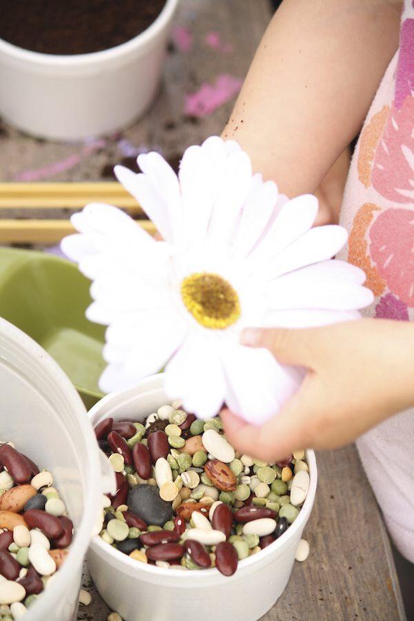 Enfant faisant semblant de planter des fleurs dans un vase rempli de lentilles séchées et de marc de café