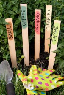 painted paint stick garden markers