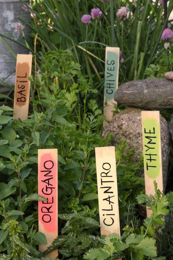 5 painted paint sticks identifying herbs in garden