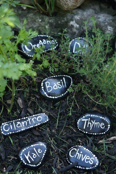 herb markers arranged vertically in herb garden
