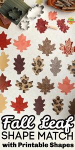 Pinnable Fall Leaf Shape Match