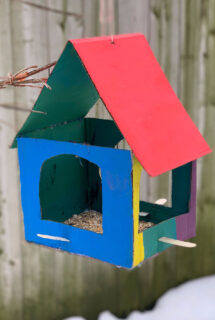 painted cardboard bird feeder feature img